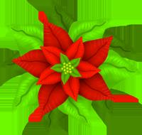 200x190 Poinsettia Clipart Green
