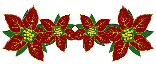 520x223 Poinsettia Clipart Red Christmas
