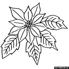 236x236 Black And White Poinsettia Clipart