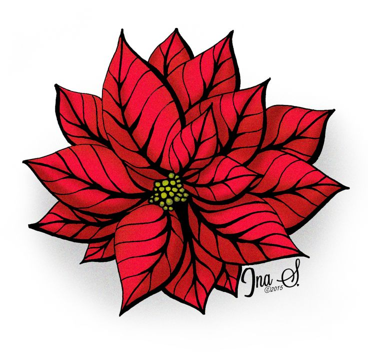 736x714 9 Best Poinsettia Images Poinsettia, Carved Candles