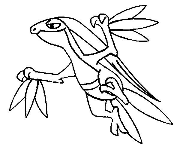 600x499 Pokemon Grovyle Coloring Pages Drawings