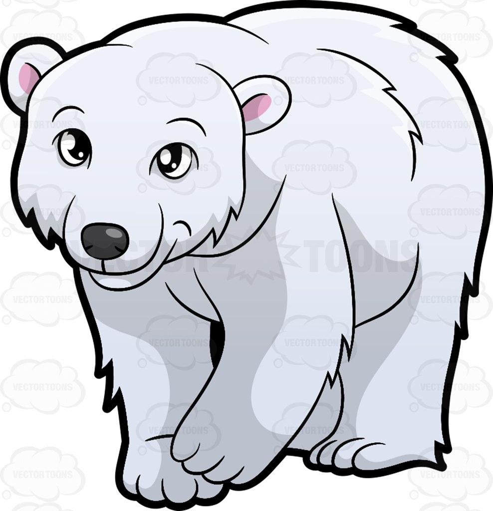 988x1024 Polar Bear Clipart Cartoon