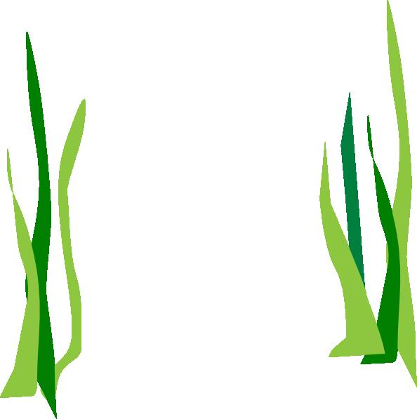 594x597 Green Reeds Clip Art