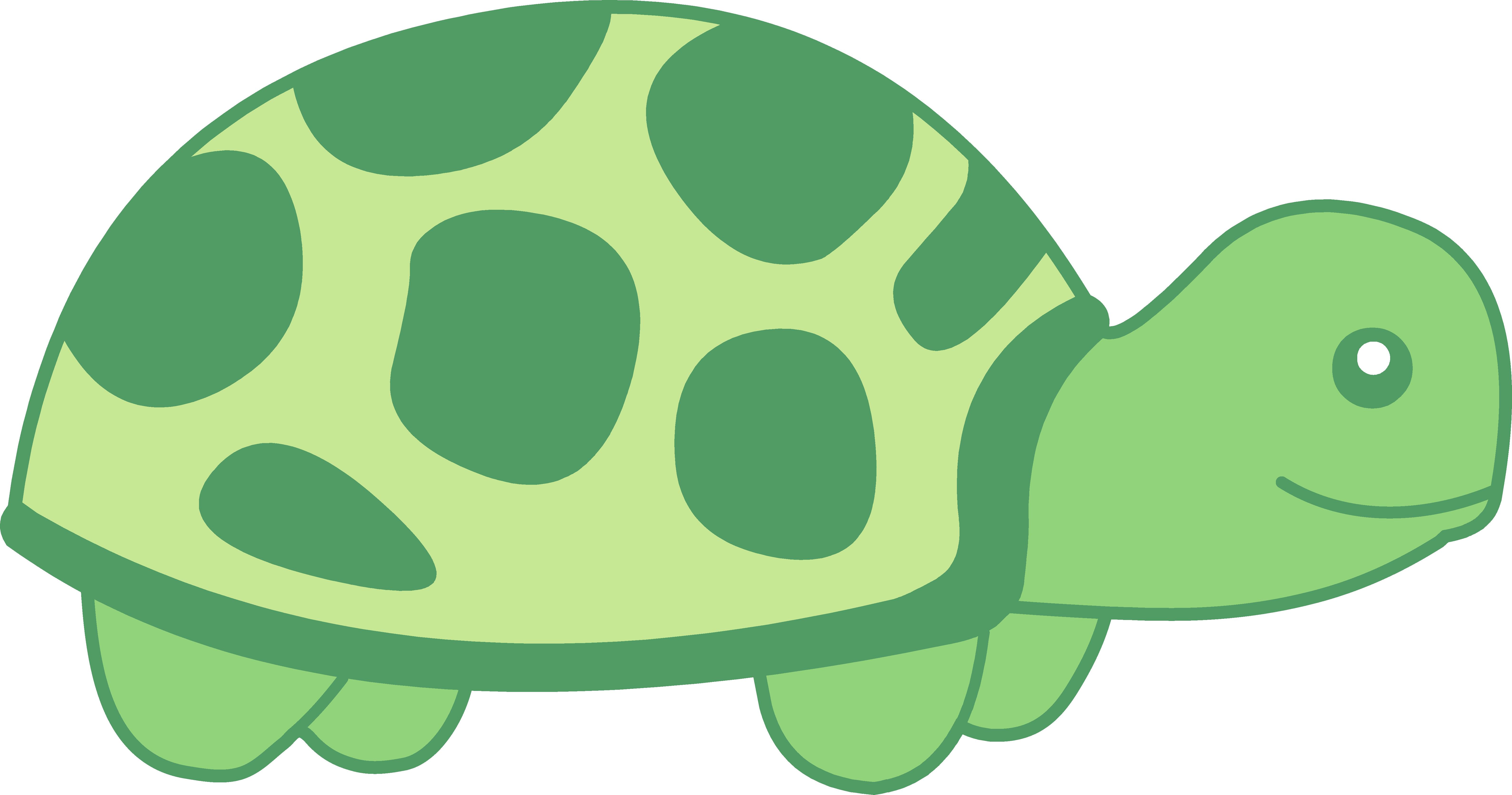 6352x3339 Little Green Turtle Design