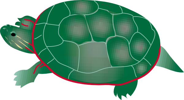 600x327 Painted Turtle Clip Art Free Vector 4vector