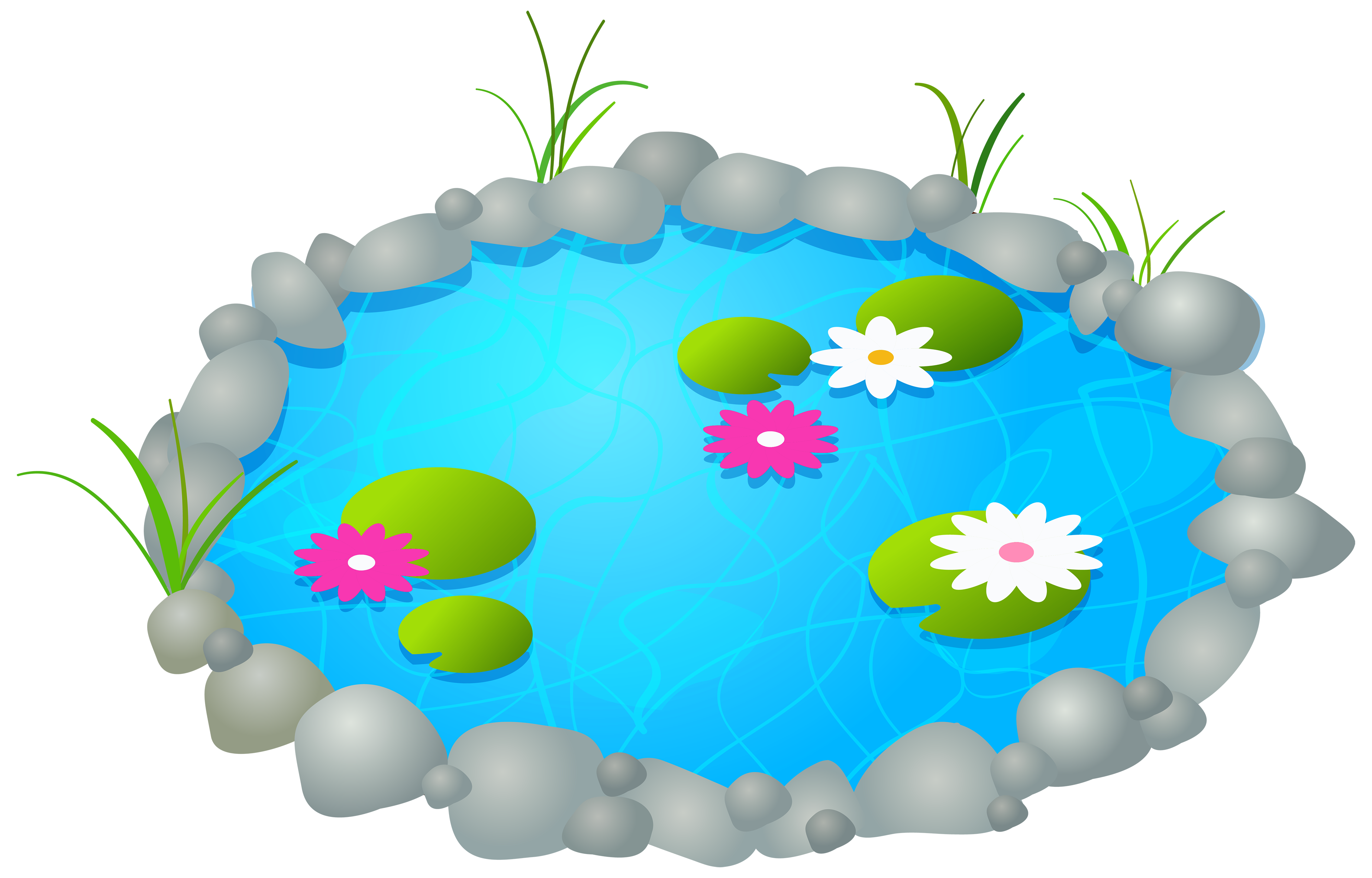 4000x2560 Pond Clipart Wikiclipart