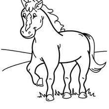 220x220 Pony Coloring Pages, Free Online Games, Drawing For Kids