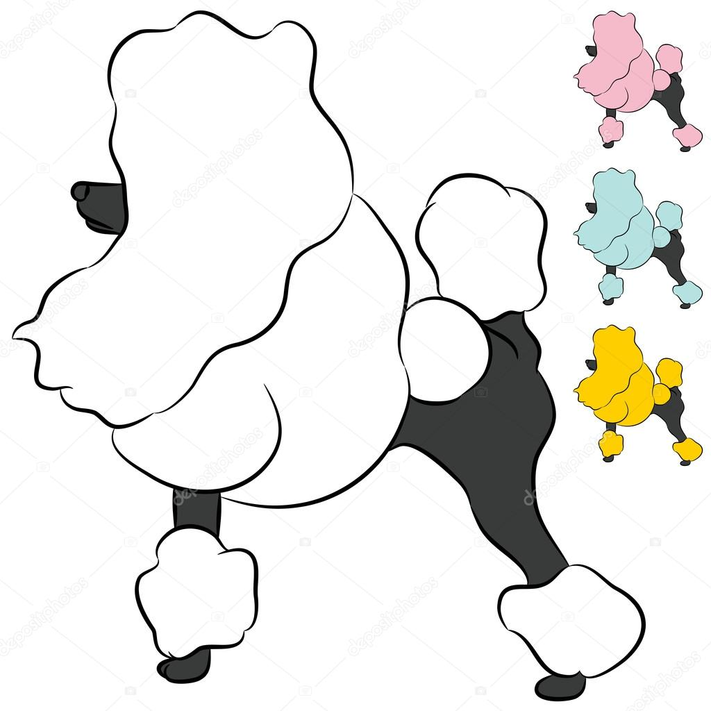1024x1024 Groomed Miniature Poodle Dog — Stock Vector © cteconsulting