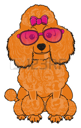 286x450 3,469 Poodle Cliparts, Stock Vector And Royalty Free Poodle