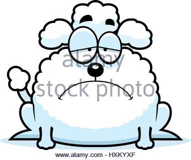 382x320 Poodle clipart sad
