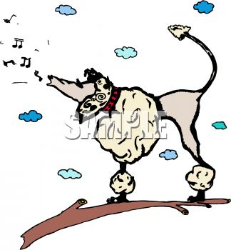 324x350 Cartoon Poodle Howling or Singing