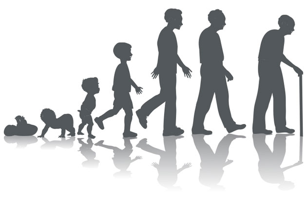630x419 Human Development Clipart