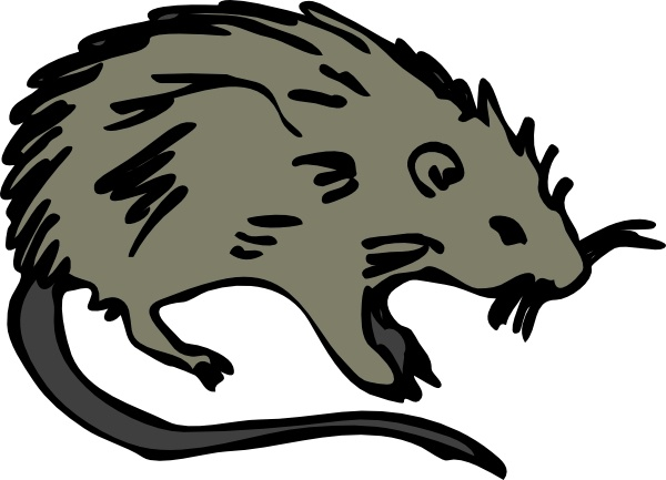 600x433 Mouse Rat Rodent Clip Art Free Vector In Open Office Drawing Svg