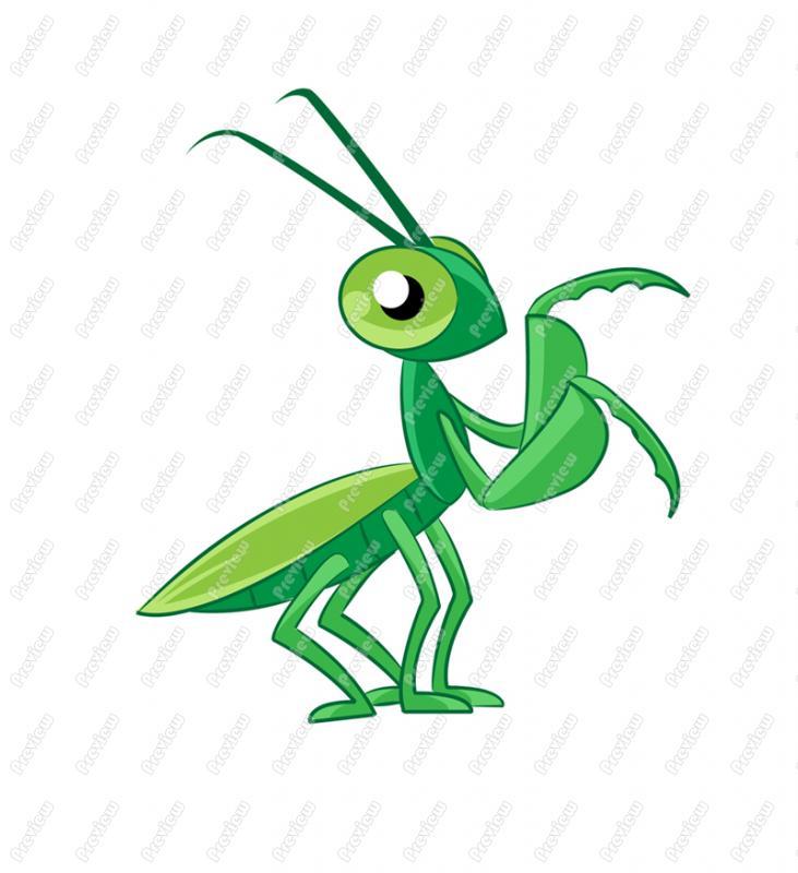731x800 Praying Mantis Character Clip Art