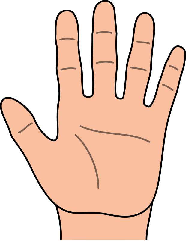 620x800 Open Praying Hands Clipart