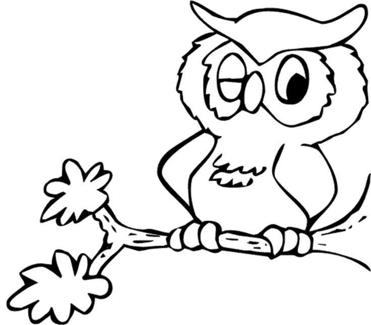 736x644 The Best Owl Coloring Pages Ideas Free Coloring