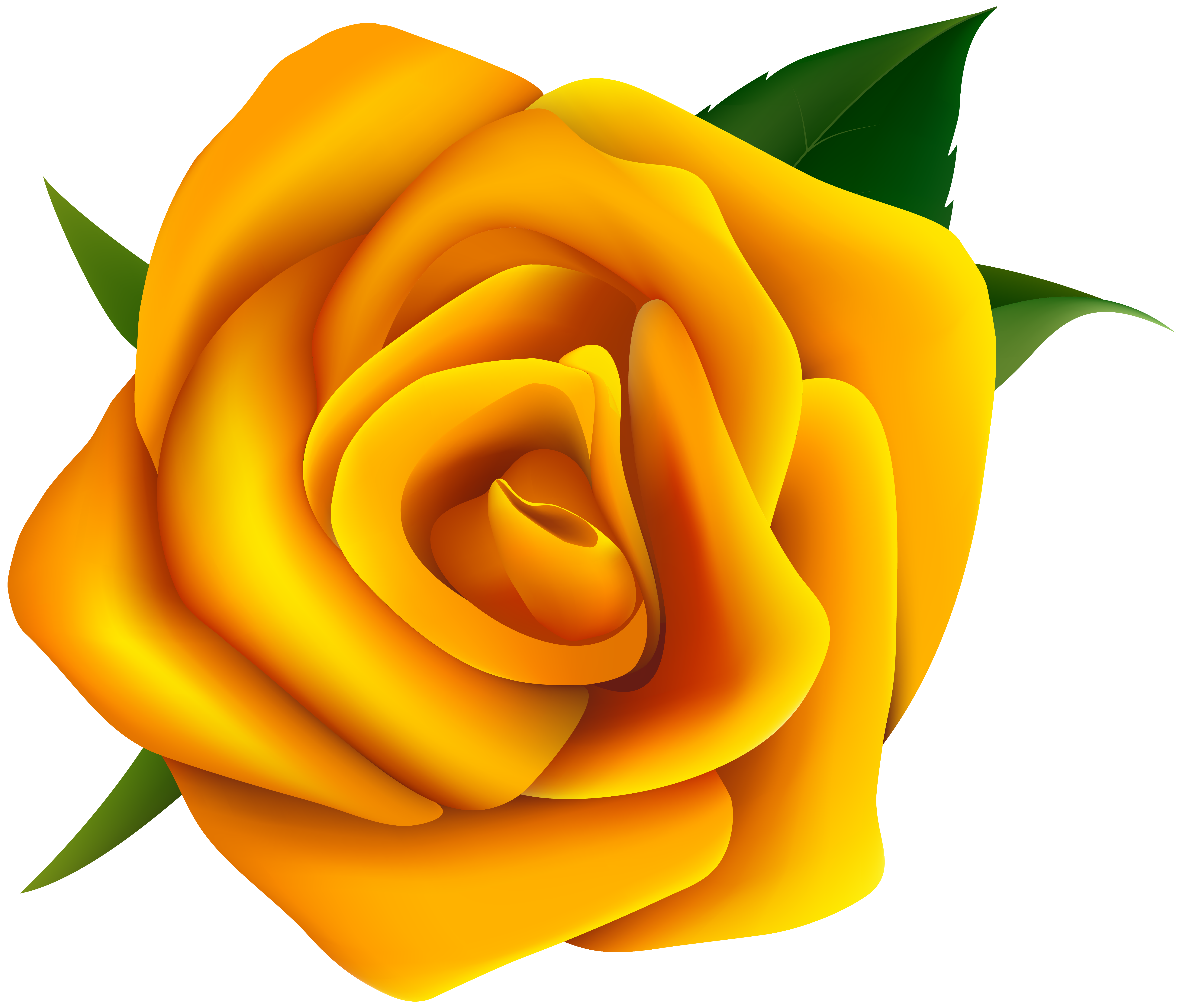 6282x5350 Free Yellow Rose Clipart