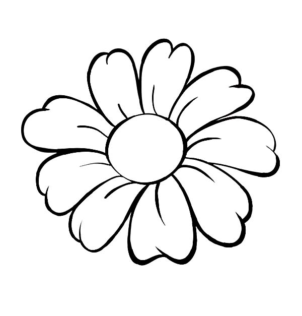 600x627 Daisy Flower, Daisy Flower Outline Coloring Page Stencils