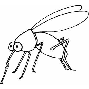 300x300 Mosquito Coloring Page