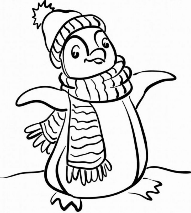 728x811 King Penguin From Falkland Islands Coloring Page Printable Click
