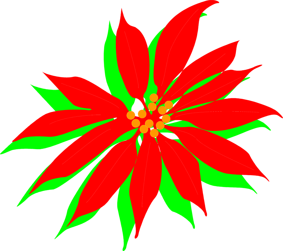 958x849 Free Poinsettia Cliparts