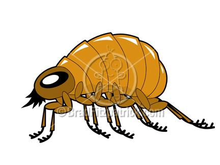 432x324 Clip Art Of A Cartoon Flea Profile Clipart Flea Profile