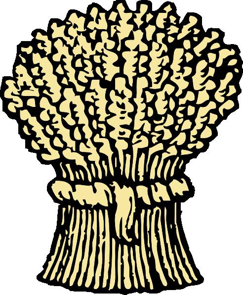492x596 Grains Clipart