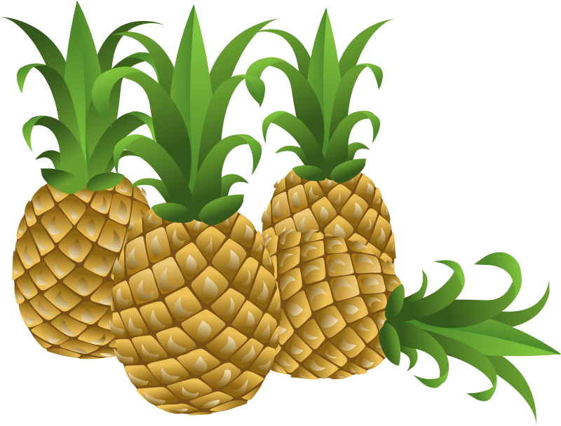 800x608 Free To Use Amp Pineapple Clip Art 2