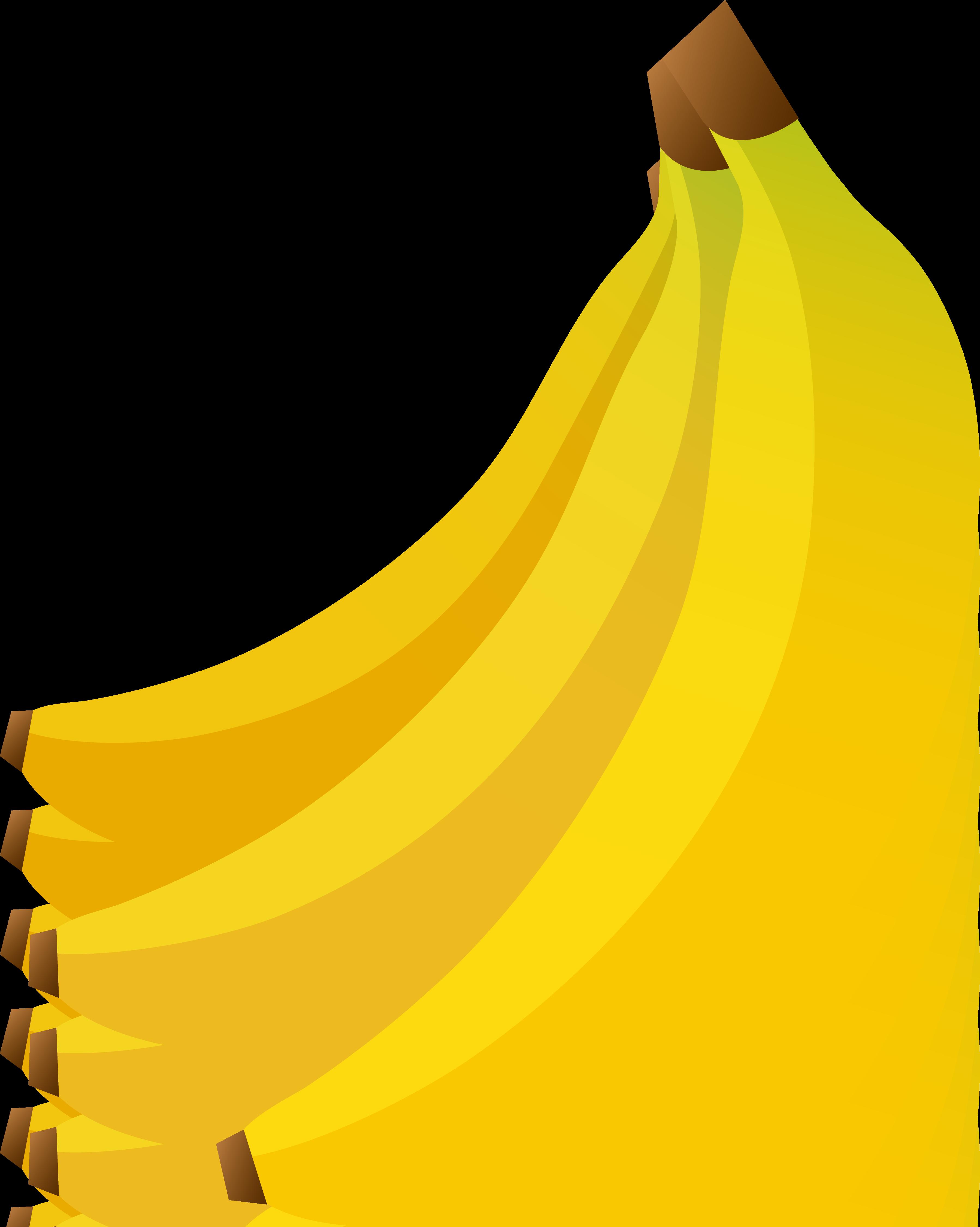 3596x4501 Bunch Of Three Bananas