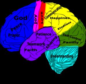 299x294 Brains Clipart Psychologist