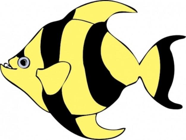 626x474 A Fish Clipart