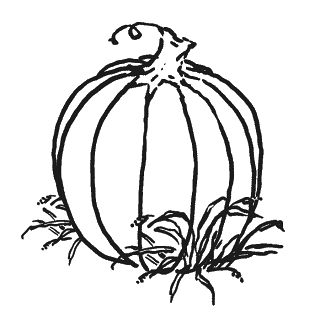 320x320 Pumpkin Black And White Pumpkin Clip Art Black 2