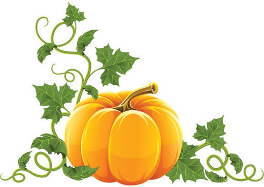 520x368 Halloween Pumpkin Border Free Vector In Adobe Illustrator Ai ( Ai