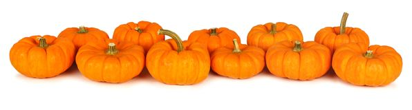 596x160 Pumpkin Row Clipart
