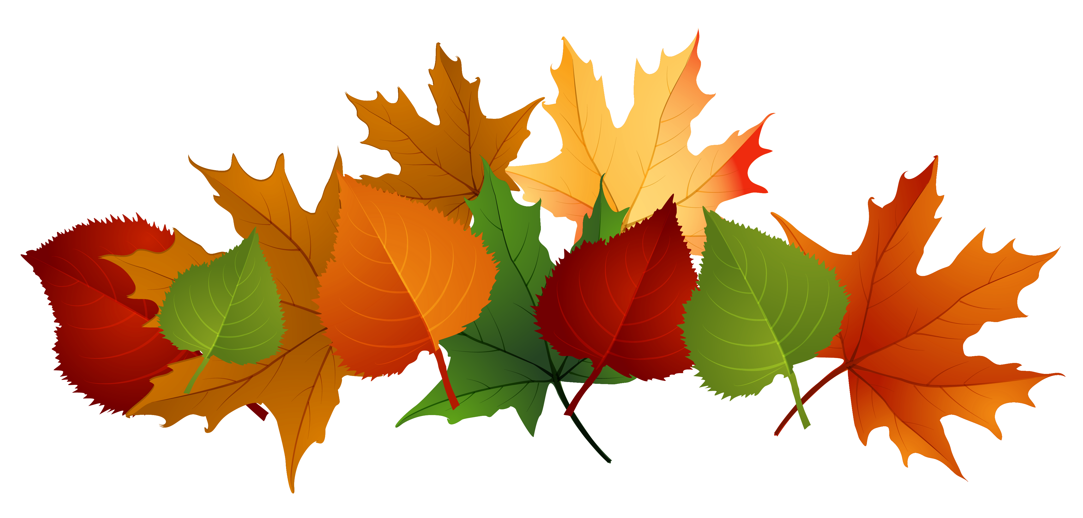 4153x1988 Pretty Clipart Fall Leaves