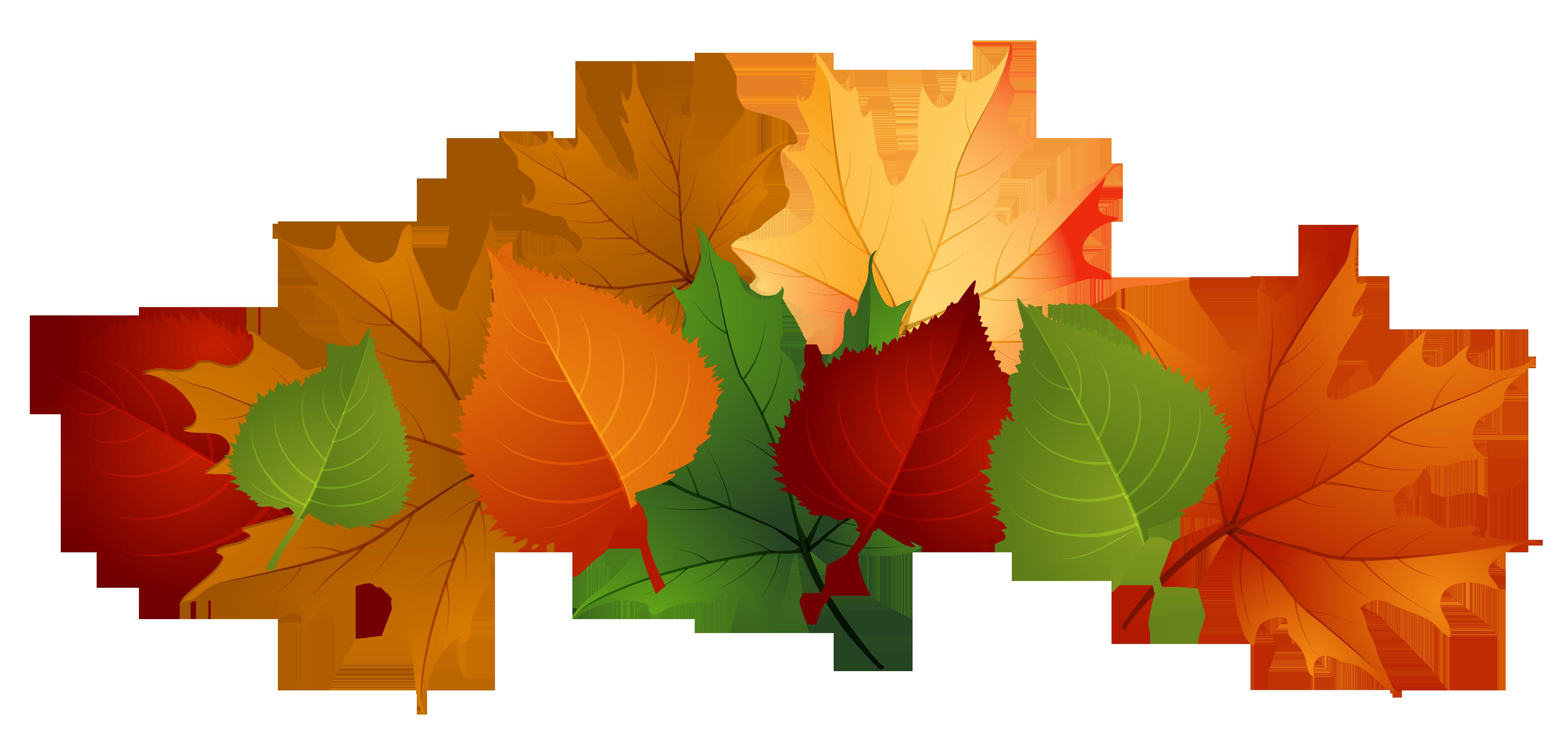 4153x1988 Pretty Clipart Fall Leaves