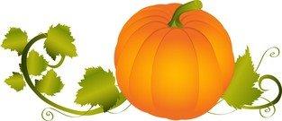 313x135 Pumpkin Vine Border Clipart