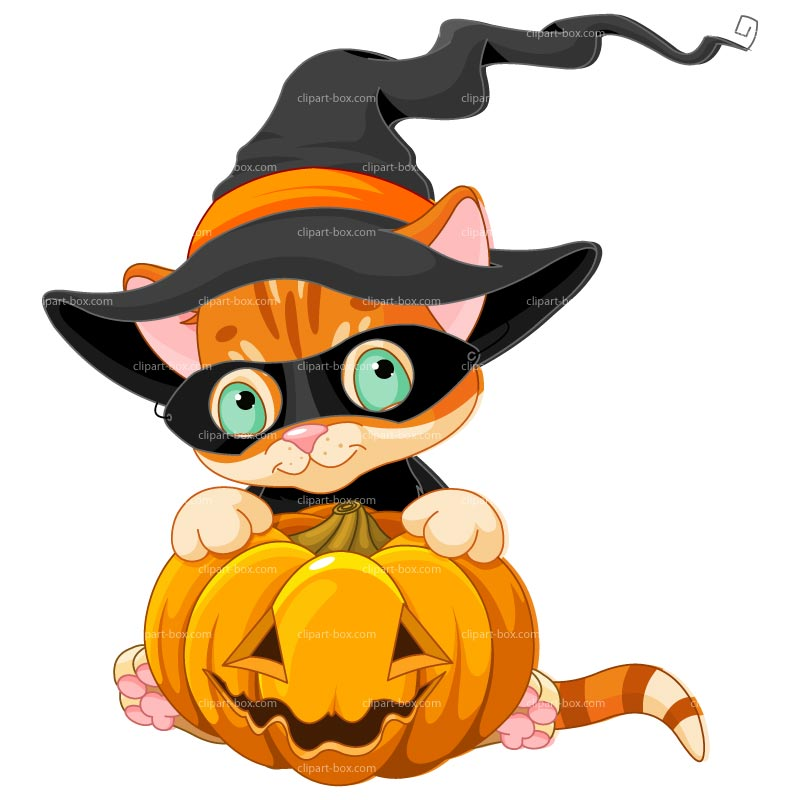 800x800 Halloween Tabby Cat And Pumpkin Clip Art Clip Art