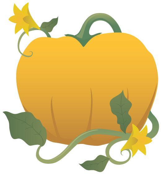 Pumpkin Leaves Clipart