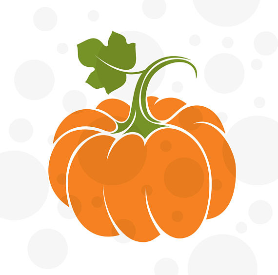 570x564 Pumpkin Svg Pumpkin Fall Pumpkin Svg Pumpkin Outline Svg