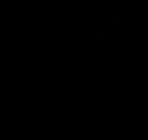 300x282 Pumpkin Black And White Pumpkin Outline Clipart Black And White