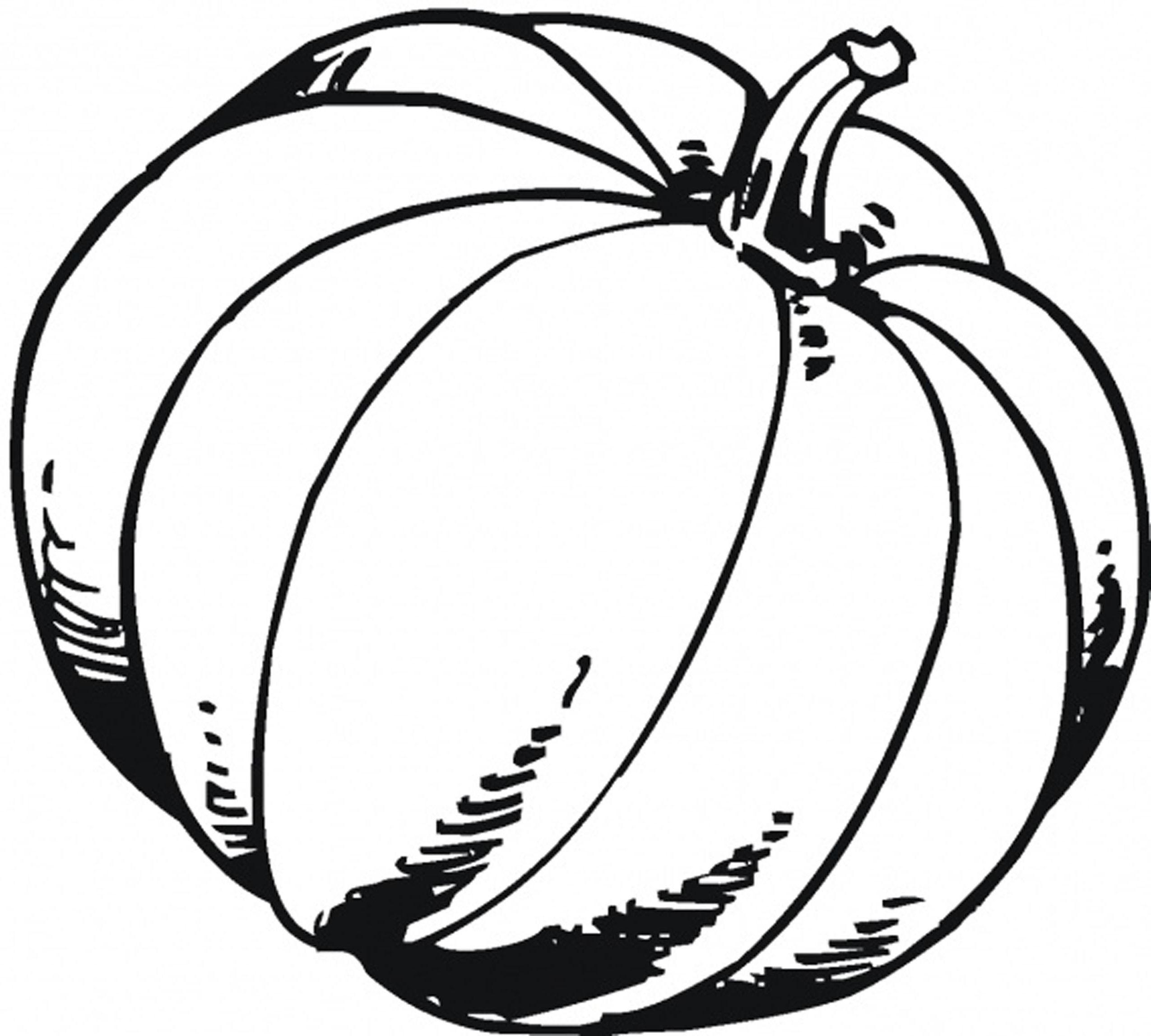 Pumpkin Outline Printable | Free download on ClipArtMag
