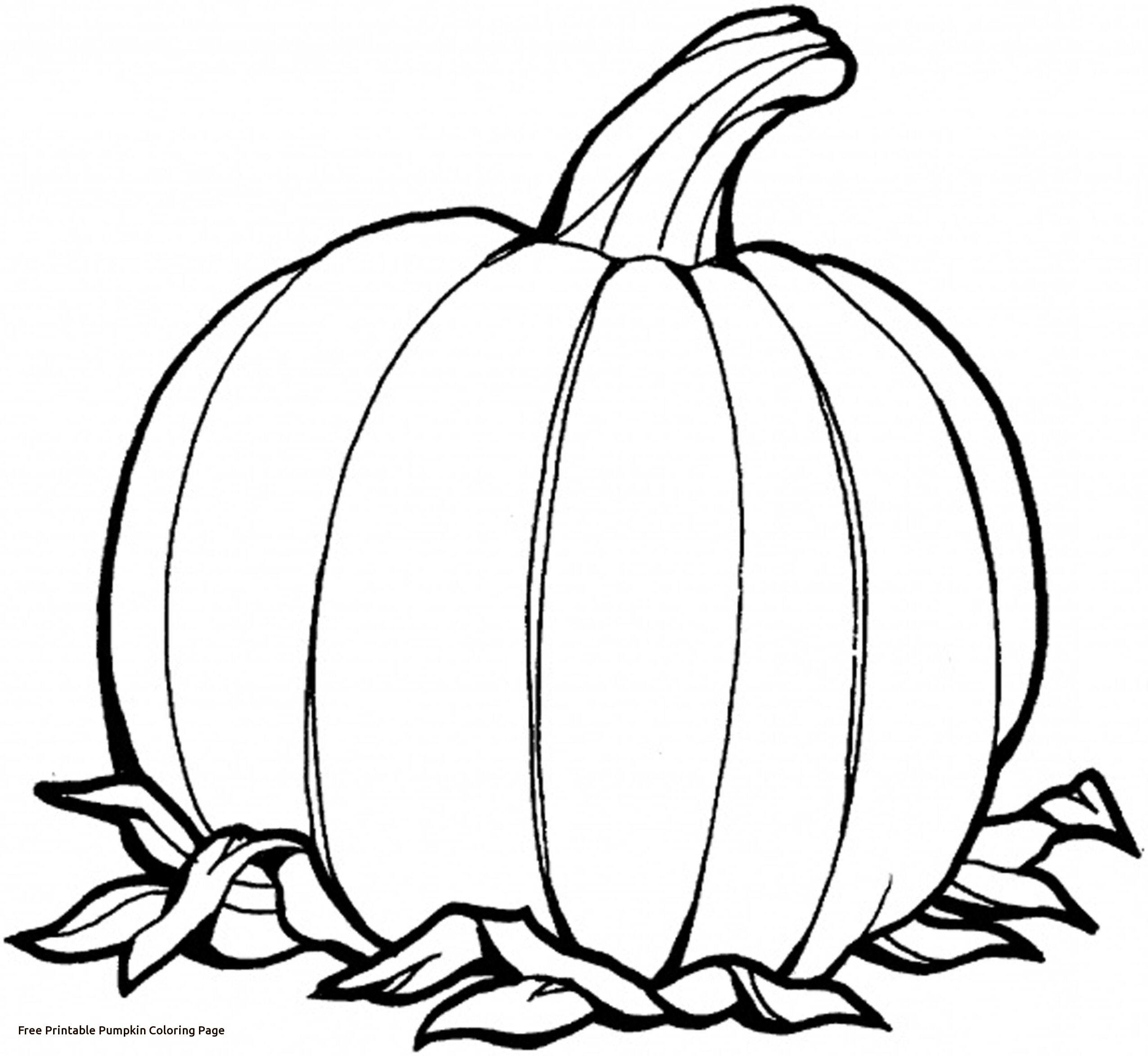 Pumpkin Outline Printable | Free download on ClipArtMag