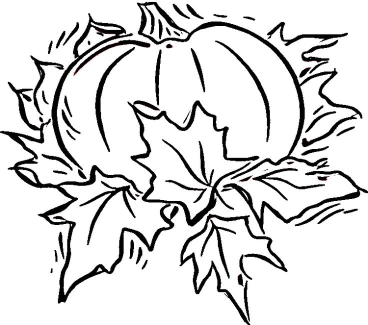 736x650 129 Best Colouring Pages Pumpkin Images Fabric