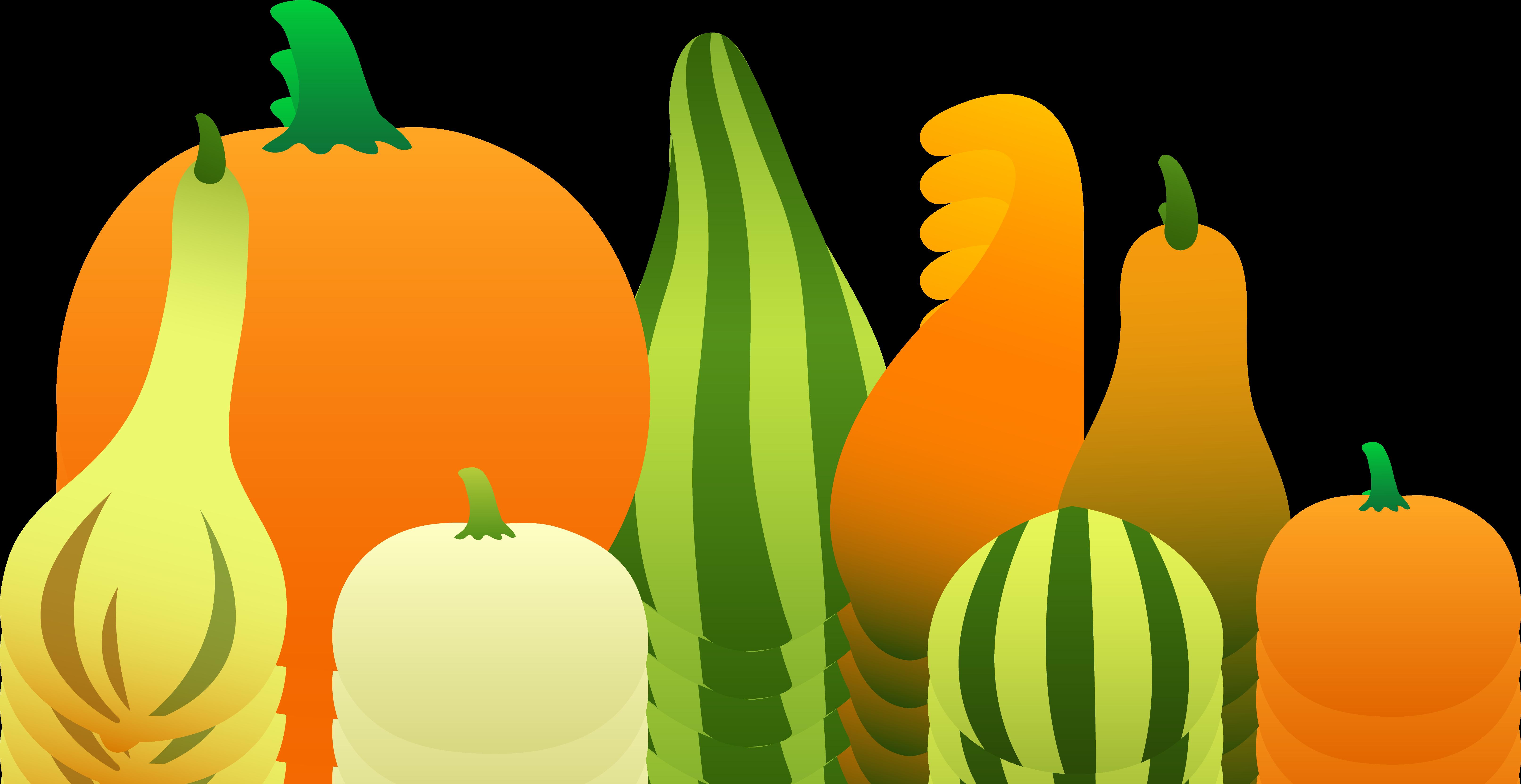 6452x3326 Thanksgiving Pumpkin Border Clipart