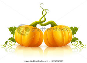 300x218 Orange Pumpkins with Tangled Vines Clipart Picture