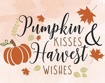 340x270 Pumpkin svg Etsy
