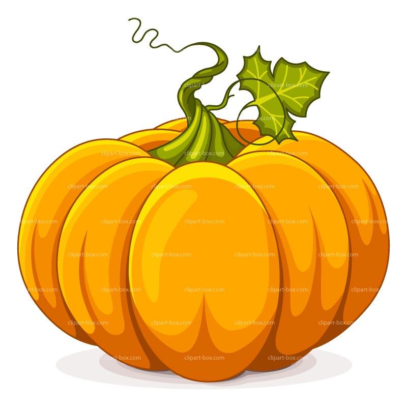 800x800 Clip Art Pumpkin