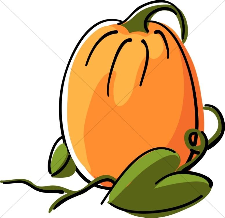 776x753 Harvest Pumpkin Clipart
