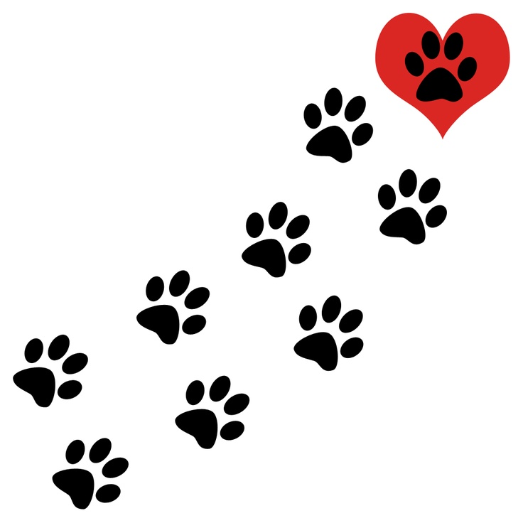 736x736 Love Heart Dog Paw Print Clipart